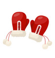 winter mittens pair vector image vector image
