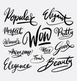 wow and popular hand written typography vector image vector image