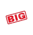 Big Text Rubber Stamp vector image vector image