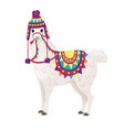 cute llama wearing decorative saddle and hat with vector image vector image