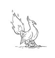 phoenix burning tail drawing vector image vector image