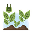 raised plant with socket plug vector image vector image