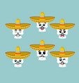skeletons and sombrero set for day of the dead vector image