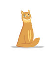 fluffy red-haired cat sitting with happy muzzle vector image vector image