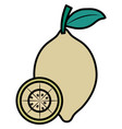 lemon icon image vector image vector image