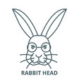 rabbit head line icon linear concept vector image vector image