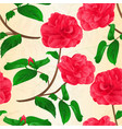 seamless texture camellia japonica flowers vector image vector image
