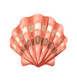 seashell tropical underwater vector image