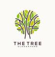 tree abstract logo circle line vector image vector image