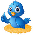 cute blue bird cartoon giving a thumbs up in the n vector image vector image