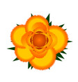 yellow rose icon vector image vector image