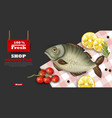 fresh fish card template realistic 3d vector image