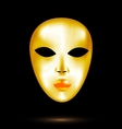 abstract golden mask vector image vector image