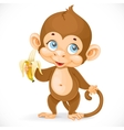 Cute baby monkey with banana stand on a white vector image vector image