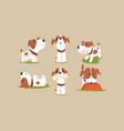 cute beagle dog in various poses collection funny vector image vector image