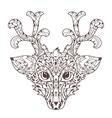 Hand drawn doodle outline deer head vector image vector image