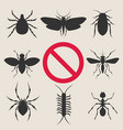 home insect pests vector image vector image