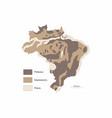 brazil relief variations vector image