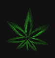 cannabis marijuana hemp leaf vector image