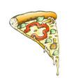 color vegetarian italian slice pizza hand drawn vector image vector image