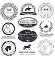 Equine Logo vector image vector image