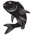 sea bass vector image vector image