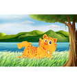 A tiger relaxing at the grass vector image vector image