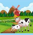 cow in farmland scene vector image