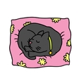 Cute doodle cat sleeps on the pillow vector image vector image