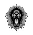 gray color or lion roars lion mascot logo vector image vector image