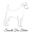smooth fox terrier dog outline vector image vector image
