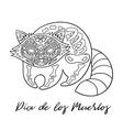 Raccoon sugar Mexican skulls vector image vector image