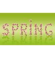 Spring word sakura tree Japanese cherry blossom vector image