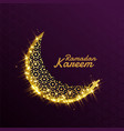 beautiful shiny sparkle golden decorative moon vector image