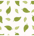cute falling green leaf vector image