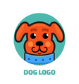 Dog Walker logo Dog logo Logo veterinarian clinic vector image