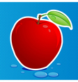 fresh apple vector image vector image