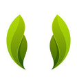 green leaf two leaves logo icon vector image