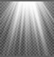 light spotlight white template for light effect vector image vector image