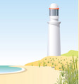 lighthouse on the coast scene vector image