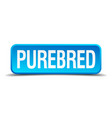 purebred blue 3d realistic square isolated button vector image