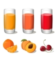 Set of juices in glass vector image vector image
