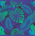 tropical rainforest seamless pattern vector image vector image