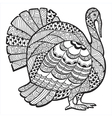 turkey entangle vector image