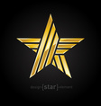 Abstract Gold star on black background vector image vector image