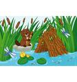 Beaver Lodge vector image vector image