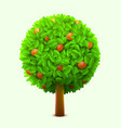 cute orange or mandarin tree with green leaves and vector image