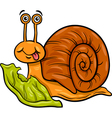 snail and lettuce cartoon vector image vector image