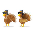 turkey in pilgrim hat happy thanksgiving holiday vector image vector image