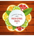 Banner with stylized citrus fruit and splashes vector image vector image